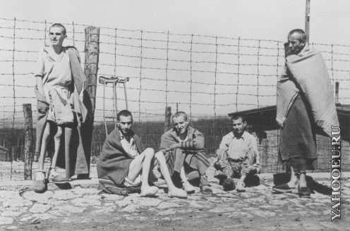 a look at the concentration camps during the holocaust