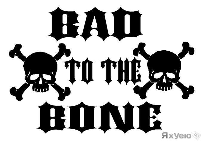 Bad to the Bone